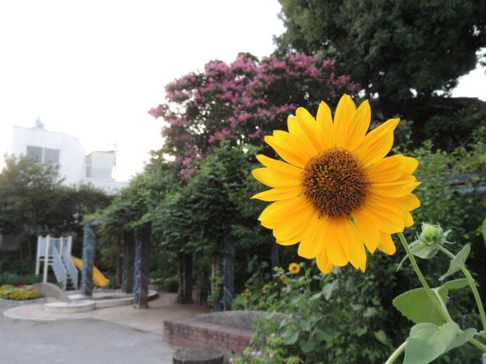 http://www.furoku.tabisanpo.com/201200816002a.jpg