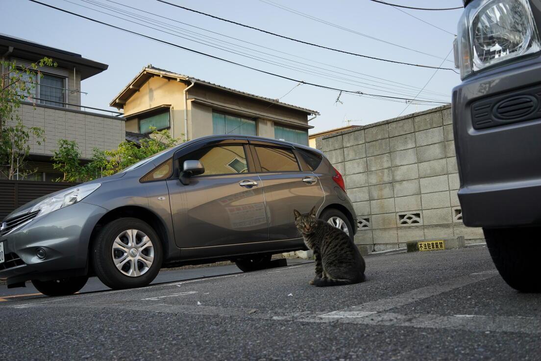 http://www.furoku.tabisanpo.com/2014004240001.JPG